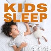 Kids Sleep de Various Artists