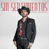 Sin Sentimientos by Carlos Montoya