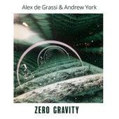 Zero Gravity by Alex de Grassi