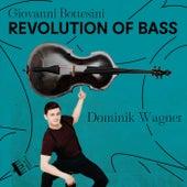 Bottesini: Revolution of Bass von Dominik Wagner