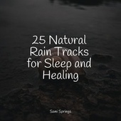 25 Natural Rain Tracks for Sleep and Healing de Rainmakers