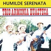 Humilde Serenata de Trío Armonía Huasteca