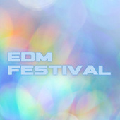 EDM Festival by Various Artists