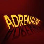 Adrenaline by X Ambassadors
