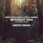 Without You (Mesto Remix) von Mike Williams