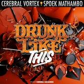 Drunk Like This by Spoek Mathambo