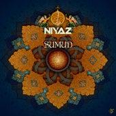 Sumud by Niyaz