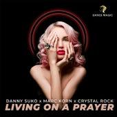 Living on a Prayer (Radio Edit) by Danny Suko