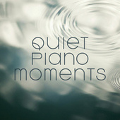 Quiet Piano Moments by Various Artists