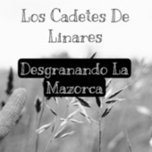 Desgranando la Mazorca by Los Cadetes De Linares