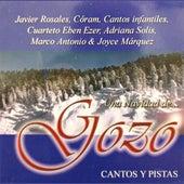 Una Navidad de Gozo by Various Artists