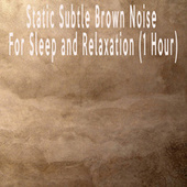 Static Subtle Brown Noise For Sleep and Relaxation (1 Hour) by Color Noise Therapy