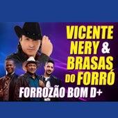 Forrrozão Bom D+ de Vicente Nery