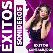Clásicos Consagrados by Exitos Sonideros