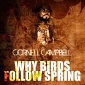 Why Birds Follow Spring de Cornell Campbell