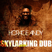 Skylarking Dub by Horace Andy