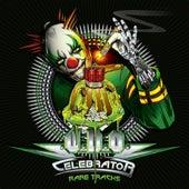 Celebrator - Rare Tracks de Various Artists