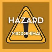 Hazard by MicroMihai