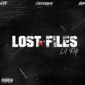 Lost Files by Lil' Flip
