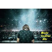 Music Festival Hits by Various Artists