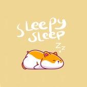 Sleepy Sleep by Various Artists