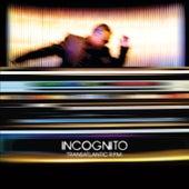 Transatlantic RPM van Incognito