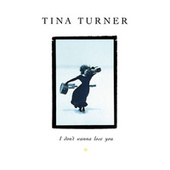 I Don't Wanna Lose You (The Singles) by Tina Turner