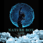 Nature Boy (Live) by White Sun