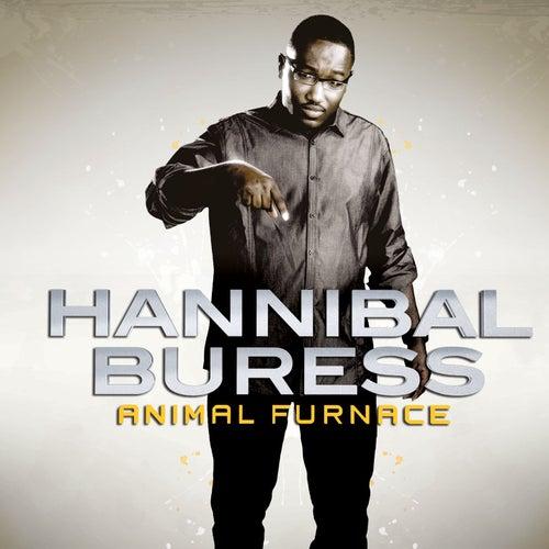 Animal Furnace by Hannibal Buress