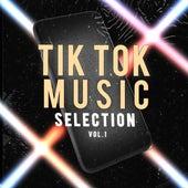 Tik Tok Music Selection, Vol. 1 von Various Artists