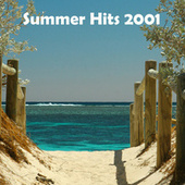 Summer Hits 2001 by Various Artists