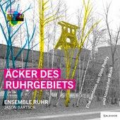 Äcker des Ruhrgebiets de Jason Bartsch