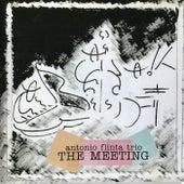 The Meeting de Antonio Flinta Trio