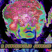 A Psychedelic Journey 2 by Various Artists