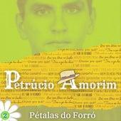 Pétalas do Forró: 2 von Petrúcio Amorim