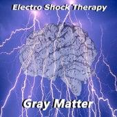 Electro Shock Therapy de Gray Matter