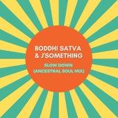 Slow Down (Ancestral Soul Mix) by Boddhi Satva