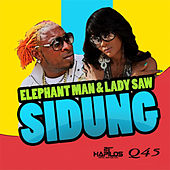 Sidung by Various Artists