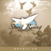 Spirit Rising Volume I & II (Album Version) de Various Artists