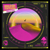 The Change (feat. DMA'S) Remixes by What So Not
