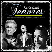 Grandes Tenores von Various Artists