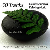 50 Tracks:  Nature Sounds & Relaxing Music For Massage, Spa, Yoga, Relaxation, New Age & Healing by Nature Tribe