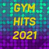 Gym Hits von Various Artists
