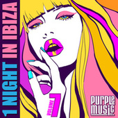 1 Night in Ibiza 7 by Various Artists