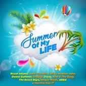 Summer Of My Life de Various Artists