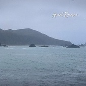 Foggy Morning Surf Waves for Sleep by Aural Escapes