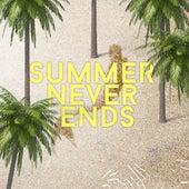 Summer Never Ends di Various Artists