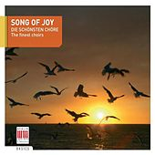 Song of Joy (The finest choirs) by Various Artists
