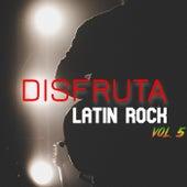 Disfruta: Latin Rock Vol.5 de Various Artists