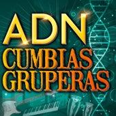 ADN - Cumbias Gruperas by Various Artists